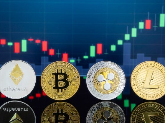 Profitable Trading On Bitcoin Circuit Cryptocurrency Website